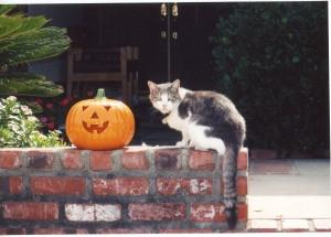 Walter at Halloween
